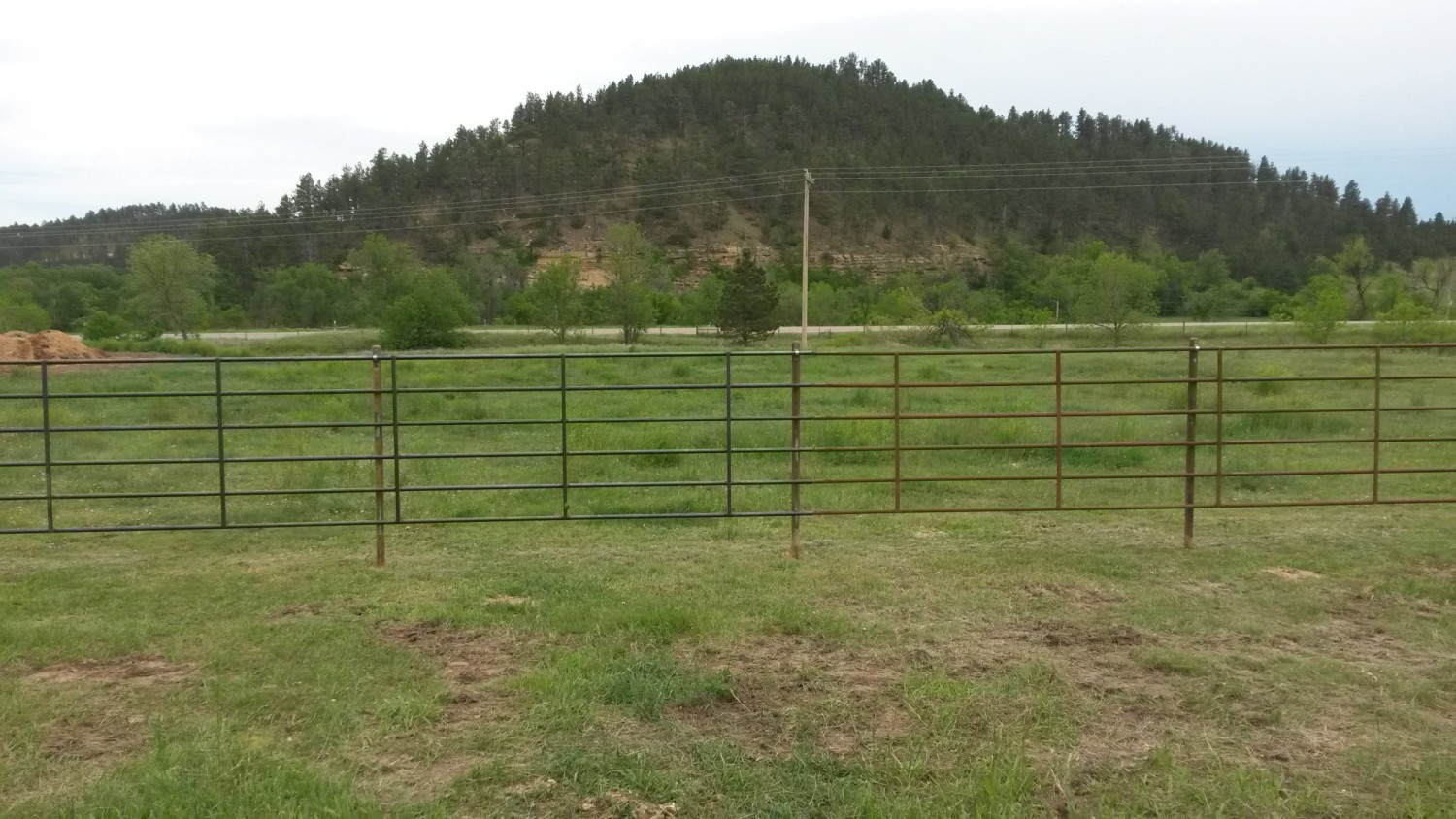 Bechen Fencing cattle fences