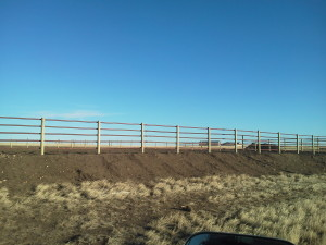 Bechen Fencing Farm Fences