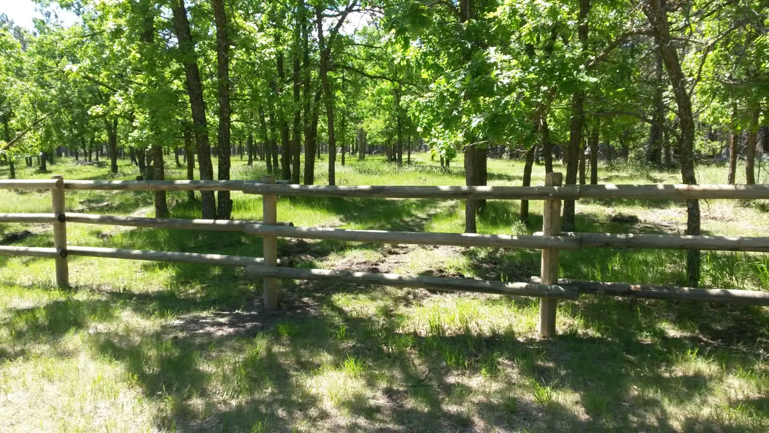 Rapid City Fencing wood fence installation